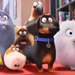 Secret Life Of Pets Soaring At Box Office