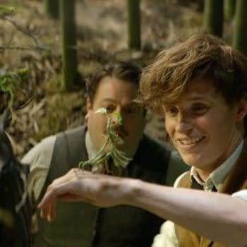 Newt Scamander Won't Be The Main Character Of All The Fantastic Beasts Films