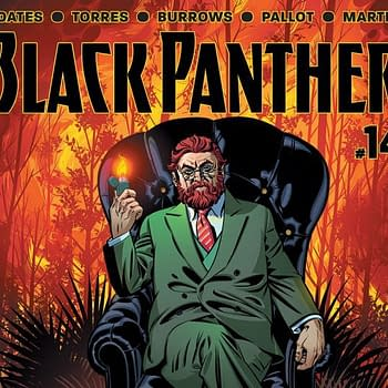 Black Panther #14 Review &#8211 The Gods Of Wakanda Are Missing In This Deepening Mystery