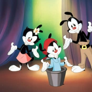 The 90's Nostalgia Train Continues With An 'Animaniacs' Reboot