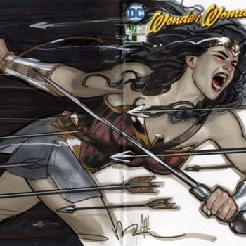 Hero Initiative To Hold 3 Live Auctions For Wonder Woman 100 Project