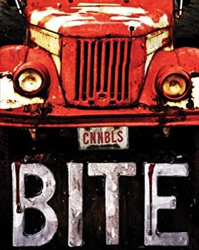 Bite Review: A Post-Apocalyptic Wasteland Romp From K.S. Merbeth