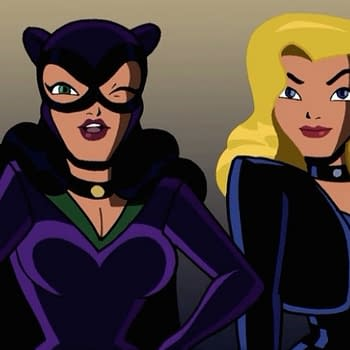 Catwoman Against Black Canary In Latest DC Versus
