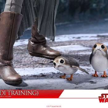 Hot Toys Rey Jedi Training Figure Looks Amazing — And Porgs