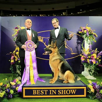 [2018 Westminster Dog Show] Going to the Dogs: Bleeding Cool Live-Blog