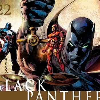 5 Days of Black Panther Day 4: Black Panther Fights Civil War