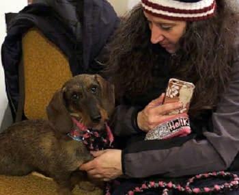 [2018 Westminster Dog Show] Dog Show Confidential