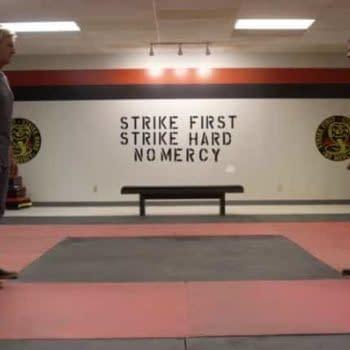 Cobra Kai: First Look at Ralph Macchio, William Zabka 'Karate Kid' Series