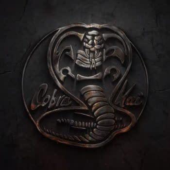 'Cobra Kai' Season 2: Jon Hurwitz Talks Teaser Trailer, Season 3, and How Long He Sees Series Lasting