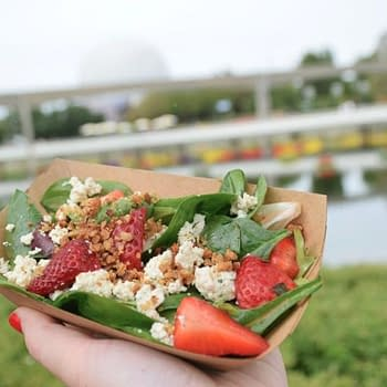 Looking for Some Meatless Options at Epcots Flower and Garden Festival