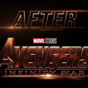 Avengers Ask Where Ant-Man and the Wasp Were During Avengers: Infinity War