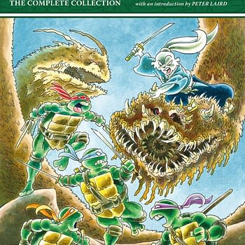 Dark Horse Collects Stan Sakais Complete TMNT/Usagi Yojimbo Crossovers