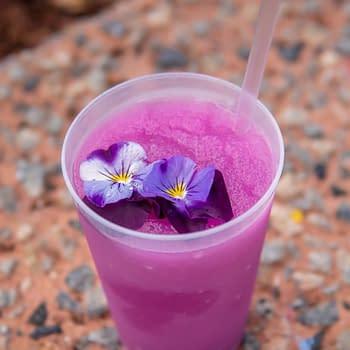 Nerd Food: Frozen Desert Violet Lemonade from Epcot