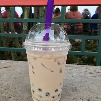 Nerd Food: Bubble Tea at Joy of Tea in Epcot