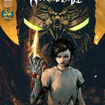 Medieval Spawn and Witchblade #2 cover by Brian Haberlin