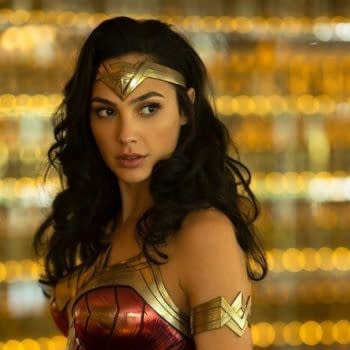 Gal Gadot Shares New Wonder Woman 2 Image