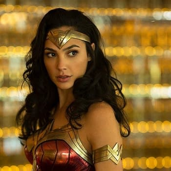 Gal Gadot Shares New Wonder Woman 2 Image
