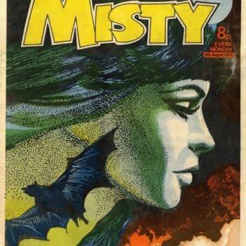 Misty by Shirley Bellwood