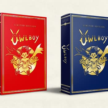 Owlboy: Limited Edition Delayed Again Until Late September