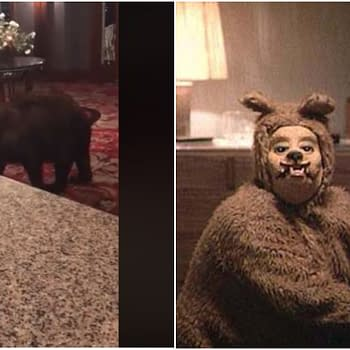 At The Overlook Hotel All Work and No Honey Makes Bear a Dull Cub