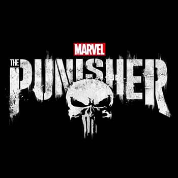 Marvels The Punisher Season 2 Hits Netflix in January 2019
