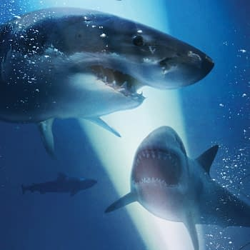 47 Meters Down: Uncaged Gets an Official Release Date