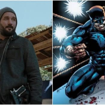 Stargirl: The Purge's Brian Stapf to Go Where The Wildcat Is