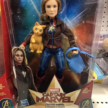 BC Toy Spotting: Captain Marvel Funko Batman NECA WWE and More