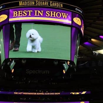 [2019 Westminster Kennel Club Dog Show] Your TV/Online Viewing Guide [VIDEO]