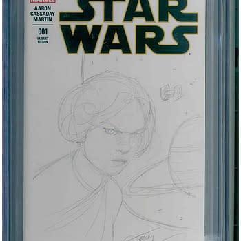 Rick & Morty/Star Wars/Walking Dead Sketch CGC Collection Stolen From Los Angeles Storage Locker