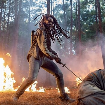The Walking Dead: Michonne Leaving &#038 More Gory Details from SDCC
