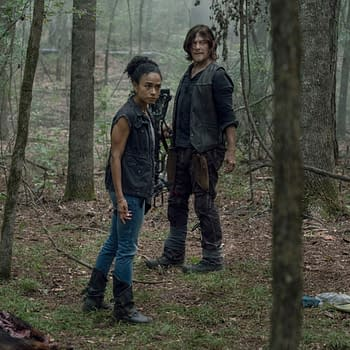 The Walking Dead: Talking Dead Post Shows TWD Still Has Caryl Problem