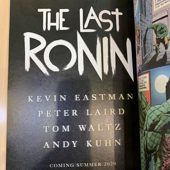 Kevin Eastman Peter Laird Reunite After Netflixs The Toys That Made Us to Create New Teenage Mutant Ninja Turtles Comic