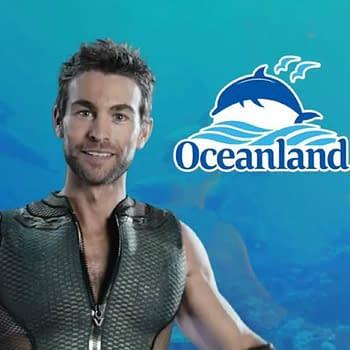 The Boys: This Summer Go Deep with Your Dolphin Experience &#8211 Go Oceanland [VIDEO]