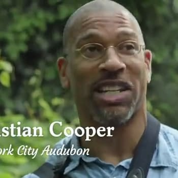 Comics Industry Reaction to&#8230 Christian Cooper in Central Park