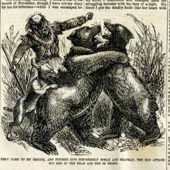 THE ISSUE: Grizzly Adams and the California Bear Flag