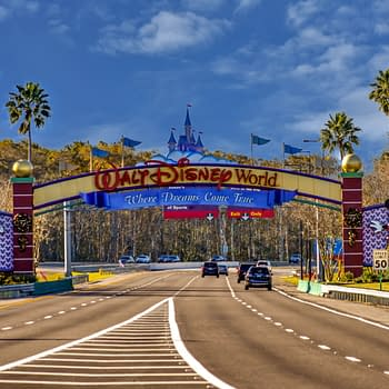 7 Magical Walt Disney World Resort Essentials for your Next Trip