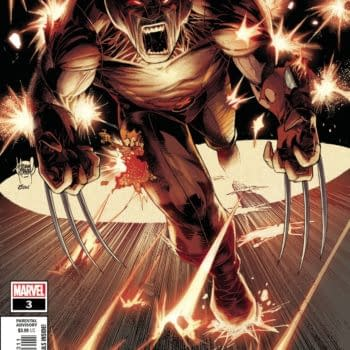 The cover to Wolverine #3
