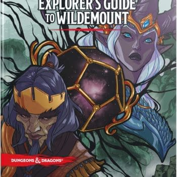 We Review Dungeons & Dragons: Explorer's Guide To Wildemount