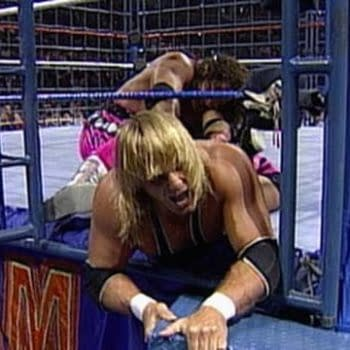 How Shawn Michaels Theft Ruined Bret Hart vs Owen Hart Cage Match