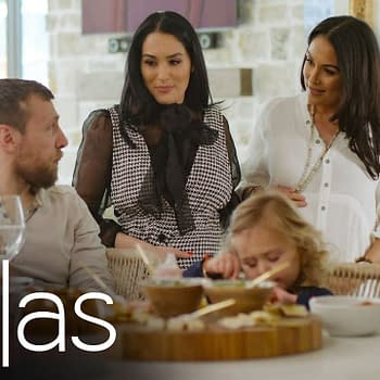 Bella Twins Conclude Total Bellas Childbirth Storyline with Swerve