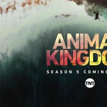 Animal Kingdom Season 5 - What We Know