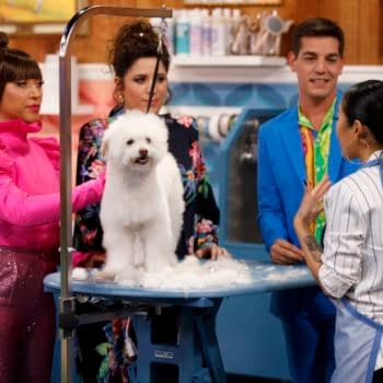 Haute Dog on HBO Max is Absolutely Paw-fection (Images: HBO Max)