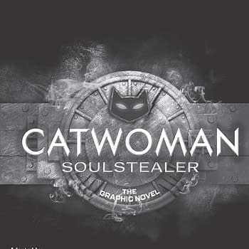 Catwoman: Soulstealer Indestructibles Delayed By DC Till August 2021