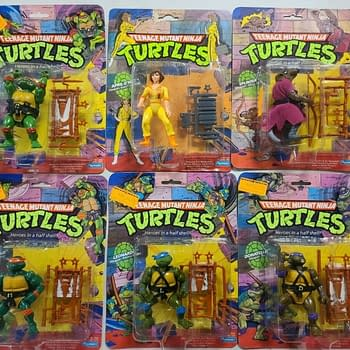 Hero Trade TMNT Playmates and Bruce Timm in Give Comics Hope Auction