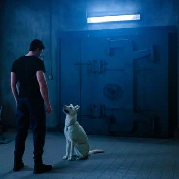 Titans star Joshua Orpin introduced the world to the newest Krypto (Image: WarnerMedia)