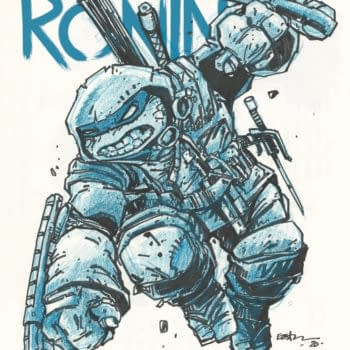 TMNT The Last Ronin Gets A Director's Cut As #2 Delayed Yet Again
