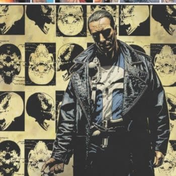 Did Marvel Cancel The Punisher Completely Without Telling Anyone?