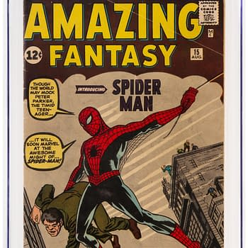 Amazing Fantasy #15 Signed By Stan Lee and Steve Ditko At Auction