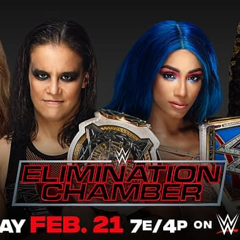 Last Minute Womens Tag Team Title Match Set for Elimination Chamber